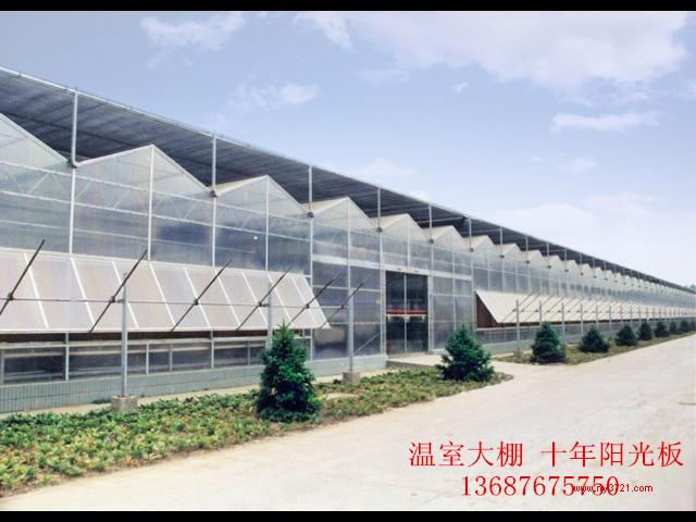 青岛专业阳光板 建造专业温室