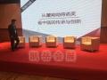 上海凱岳文化供應舞臺背景板LED大屏燈光線陣租賃