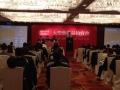 云南省化石拍卖公司一览