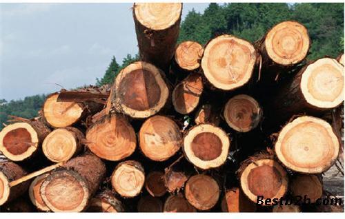 2014年1月份,中国木材市场代价综合指数为116.6 %,同比上涨10.