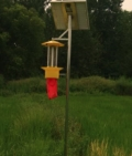 河北3米太陽能防蟲燈
