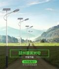 新农村太阳能路灯9米led路灯60瓦道路灯