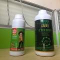 中藥材用根小子肥料促進根系生長