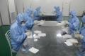 門診用的透皮貼拿貨使用方法沙蒿子透皮貼廠章丘代理