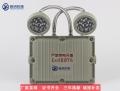 BAJ52LED防爆雙頭應急燈(IIC)
