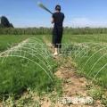 河北潤澤玻璃鋼拱棚支架新型花卉蔬菜育苗棚