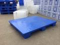 广东塑料托盘食品箱防潮垫板生产厂家
