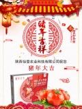包邮怡萱农业圣女果4斤装2月12日发货