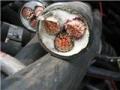 天津滨海新区哪里可以上门回收旧电缆的