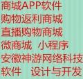 商城APP软件开发 安徽神游网络科技软件开发