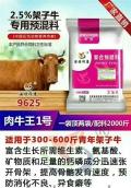 吉林青年架子牛专用料核心料厂家